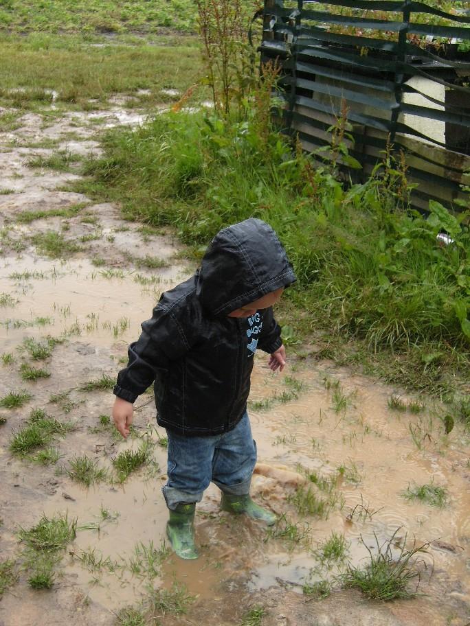 Rainy pyo
