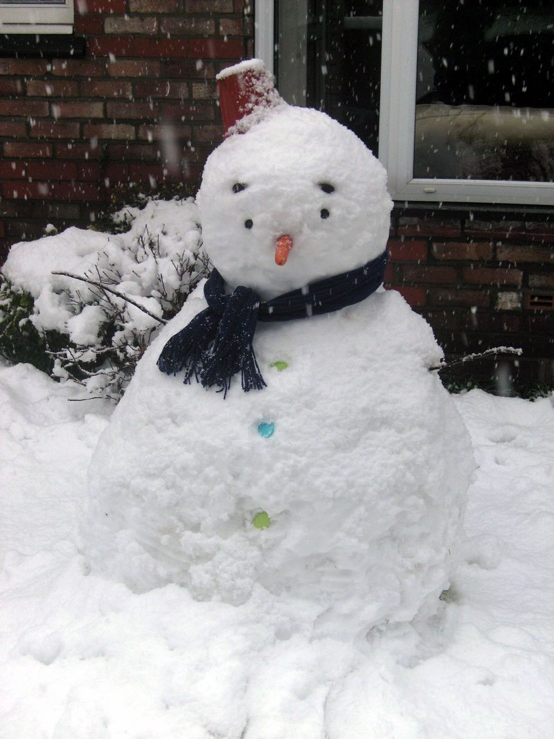 Fred the Snowman